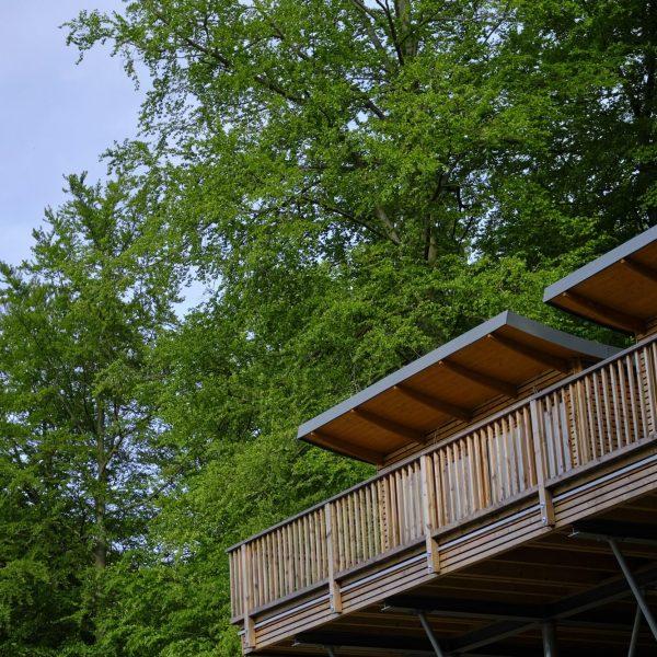 Baumhaus Balkon mit grünen bäumen im Hintergrund