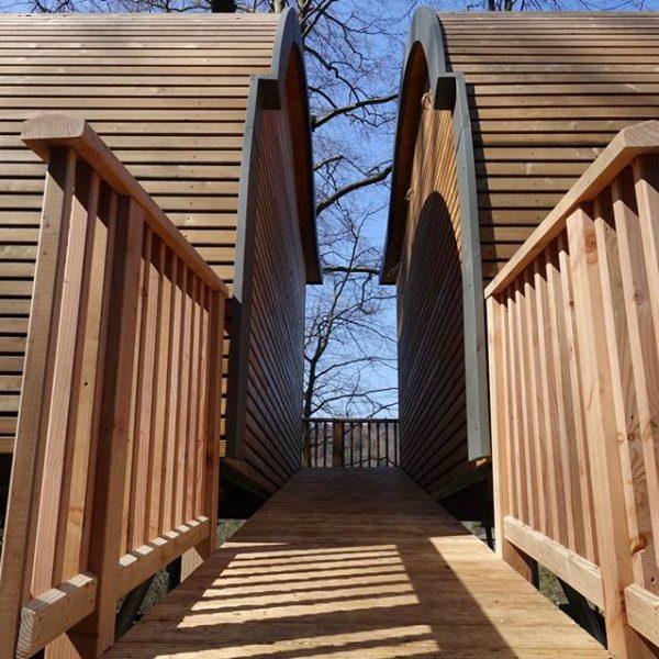 zu den Eingängen der Baumhäuser