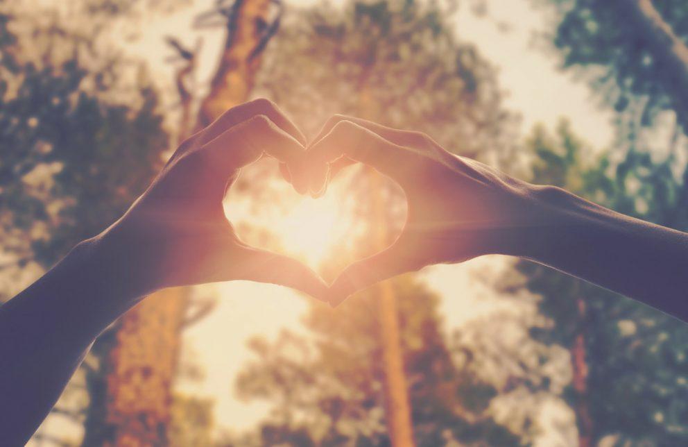 Hände formt ein Herz welches zur Sonne zeigt