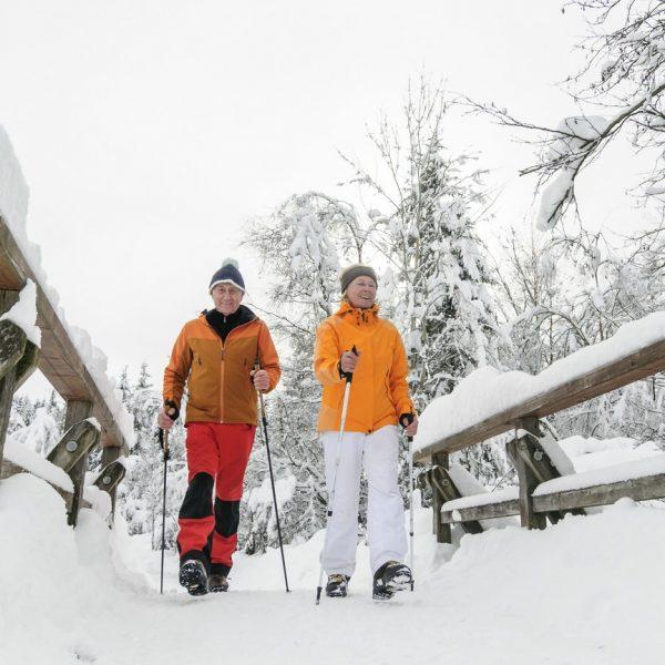 Altes Paar walked im Schnee