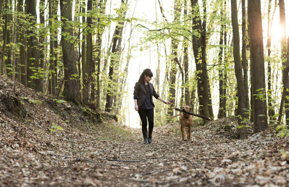 Frau geht mit Hund auf Waldweg