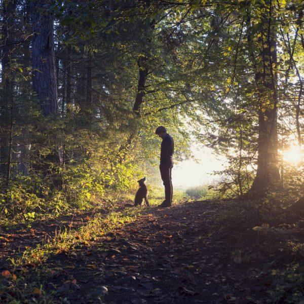 Mann mit seinem Hund im Wald