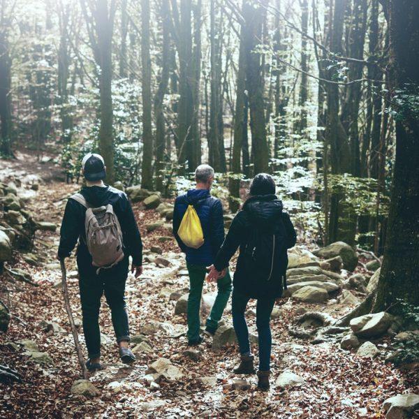 Gruppe wandert im Wald